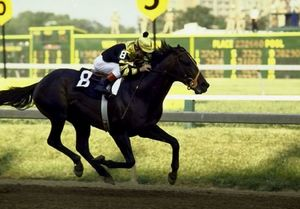Great grand sire on dam's side